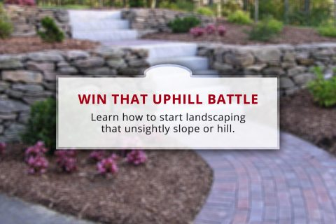 Win the Uphill Battle: How to Landscape a Hill