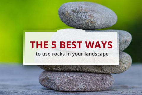 The 5 Best Ways to Use Rocks in Your Landscape