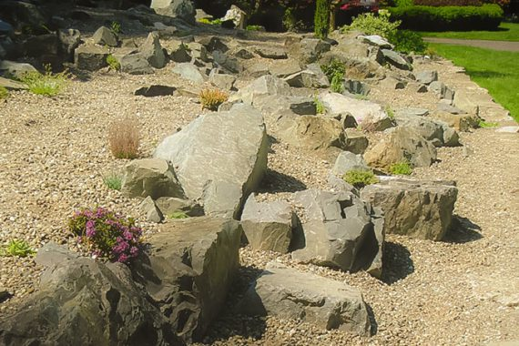 use rocks to create a rugged landscape