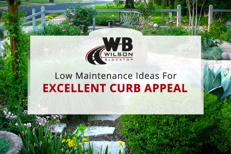 Low Maintenance Landscaping Ideas for Excellent Curb Appeal