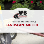 Wilson Blacktop's Landscaping Tips