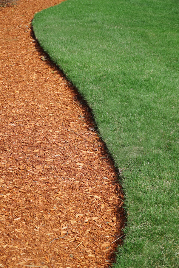 Curved landscape edge