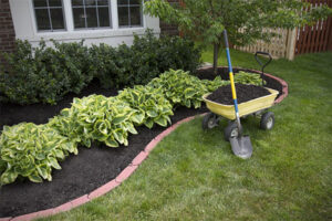 Mulch in wagon with shovel next to newly mulched landscaping