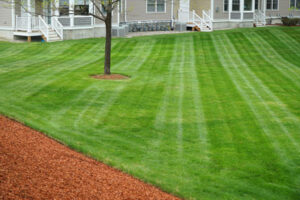 Lawn cut at an angle from house