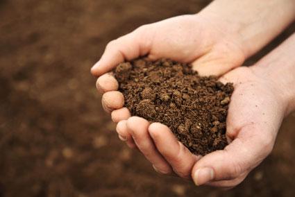 Hands holding rich soil